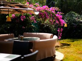 Book a room in Goa