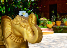 Premium hotel in Goa Papa Jolly