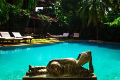 Book a hotel wiin Goa Papa Jolly