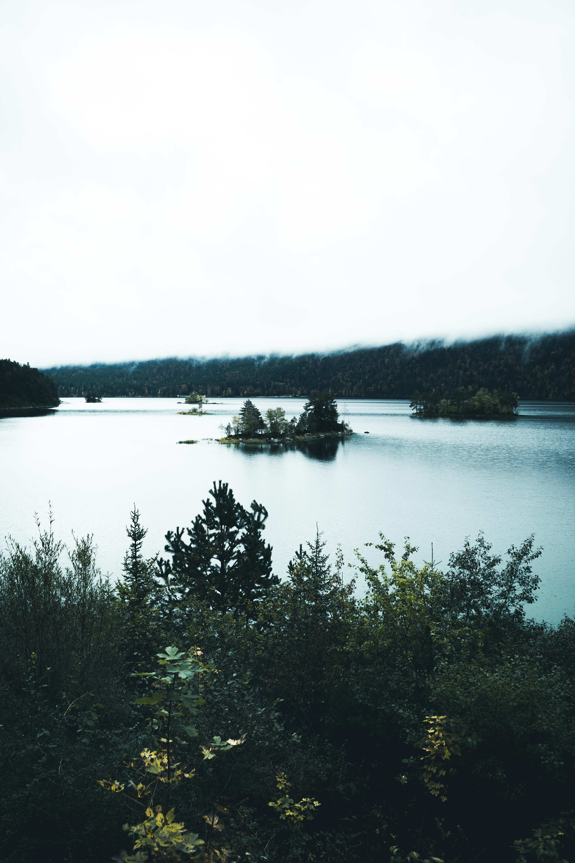 Bild-98