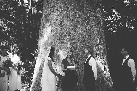 Nz Wedding Celebrant