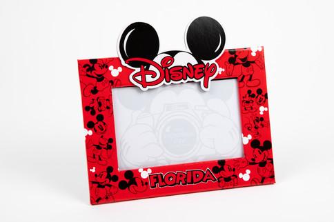 Disney Florida frame