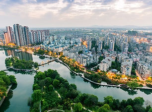 fuzhou-city-bird-920x500.jpg