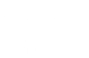 MICHeVIN_Logo.png