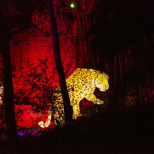 Magical Garden Porto - Lago do Leopardo