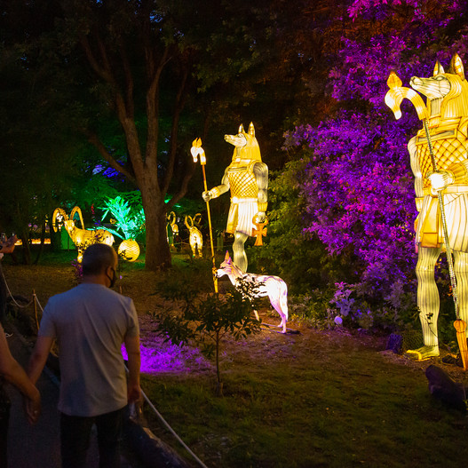 Magical Garden Porto - Egito Dourado