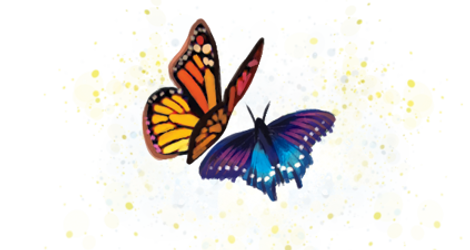 borboletas.png