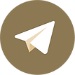 telegram delterre icon.png