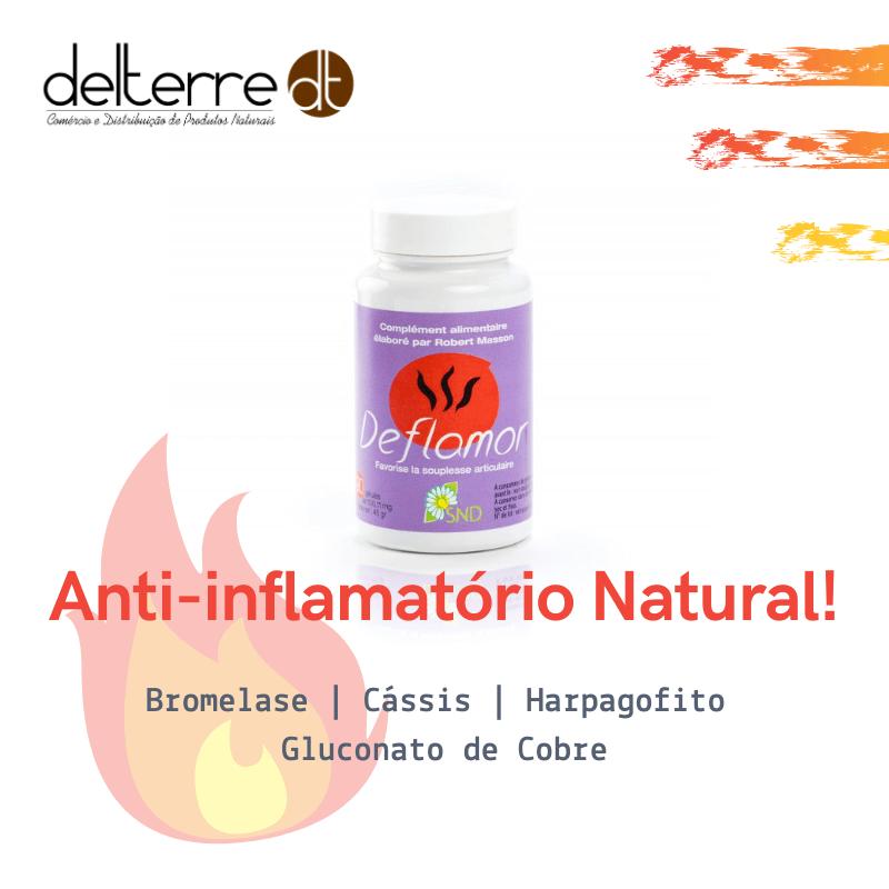 Harpagophytum Unha do diabo - anti-inflamatório natural