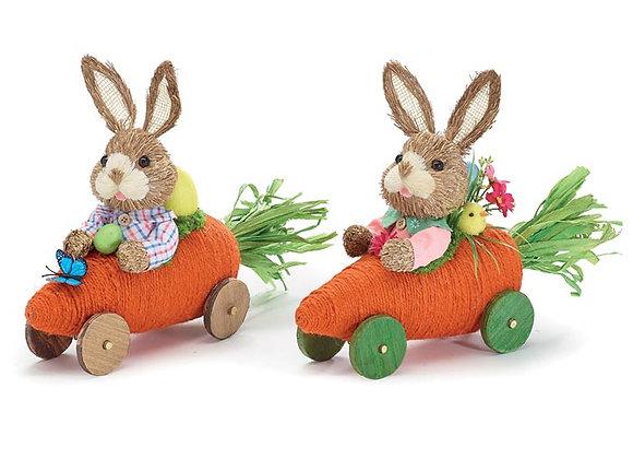 """14"""" Carrot Car Bunnies -Set of 2"""