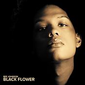 bee johnson black flower 2016.webp