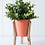 Thumbnail: Malik Planter Small - Tin and Timber Watermelon