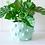 Thumbnail: Sage bubble planter