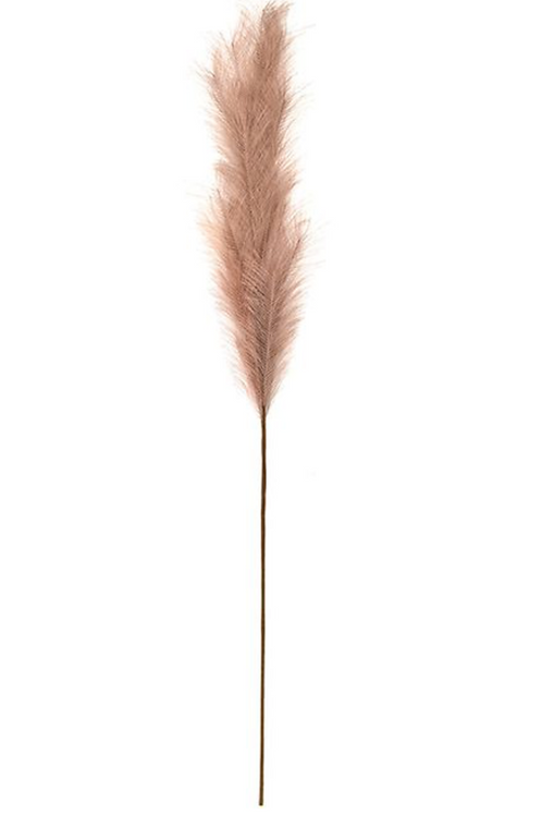 Pampas grass - Blush (faux)