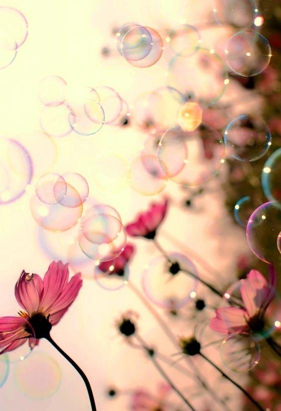 bulles-géantes-fleurs