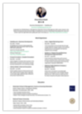 cakeresume_resume_writing_service_templa