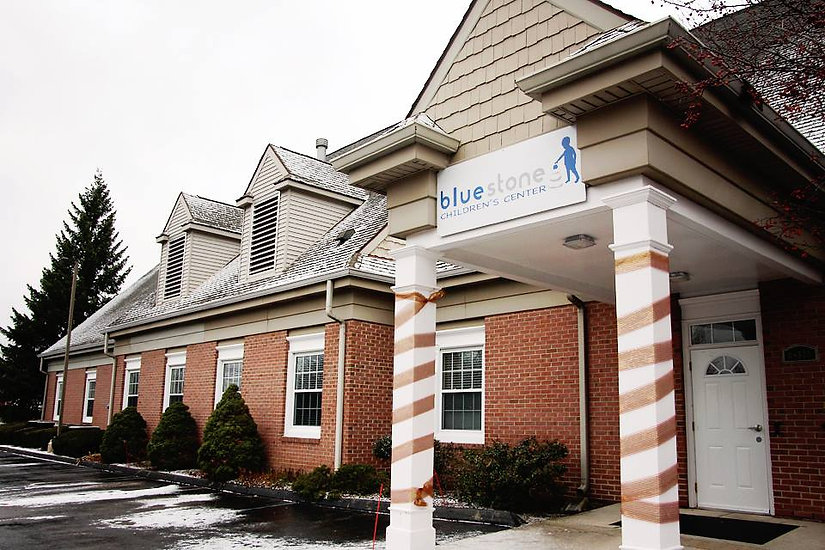 Bluestone Autism Center providing ABA therapy for kids