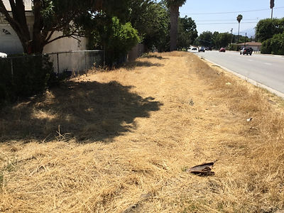 Photo of West 30th Street Linear Park Site