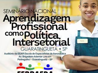Aprendizagem Profissional como Política Intersetorial