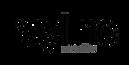 raylinc logo