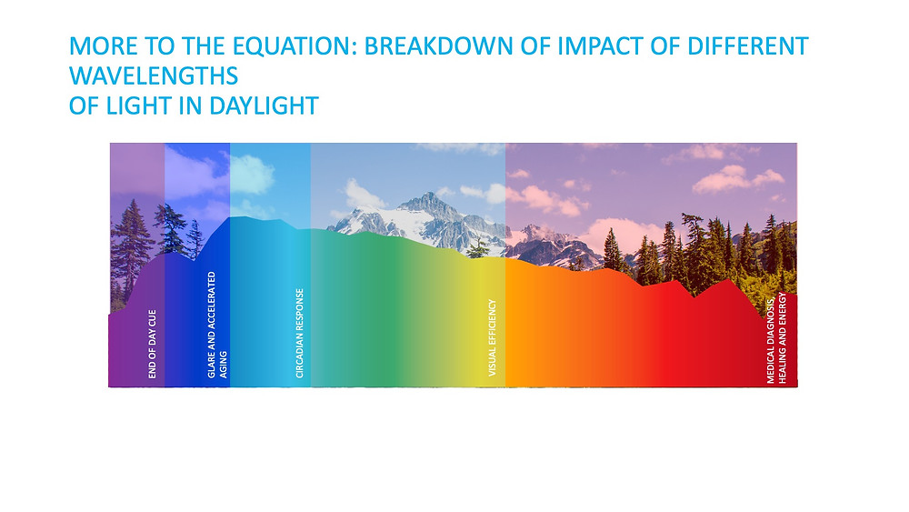 breakdown of impact of different wavelengths of light in daylight.