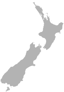nz map grey.png