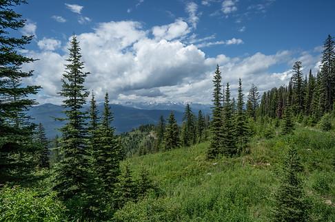 Rocky Mountains, Montana