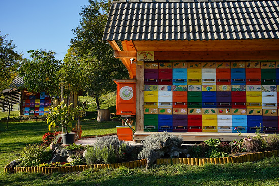 Traditional Bee House in Slovenia, the country of beekeepers