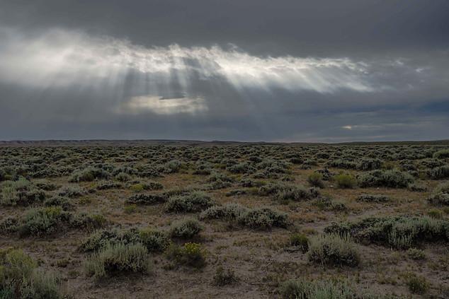 Sagebrush Landscape, Great Divide Basin.