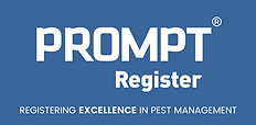 Prompt Logo.png