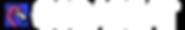 Copy of COLOR-SIMPLE_header_logo.png
