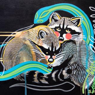 Raccoon Medicine
