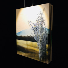 Nemiah Valley @ Oxygen Art Centre
