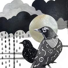 Robin Awaiting the Rain