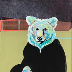 Meditating Bear