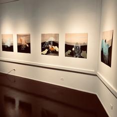 After Eden @ Kootenay Art Gallery