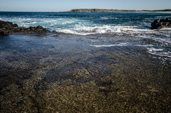 phiillip island-13