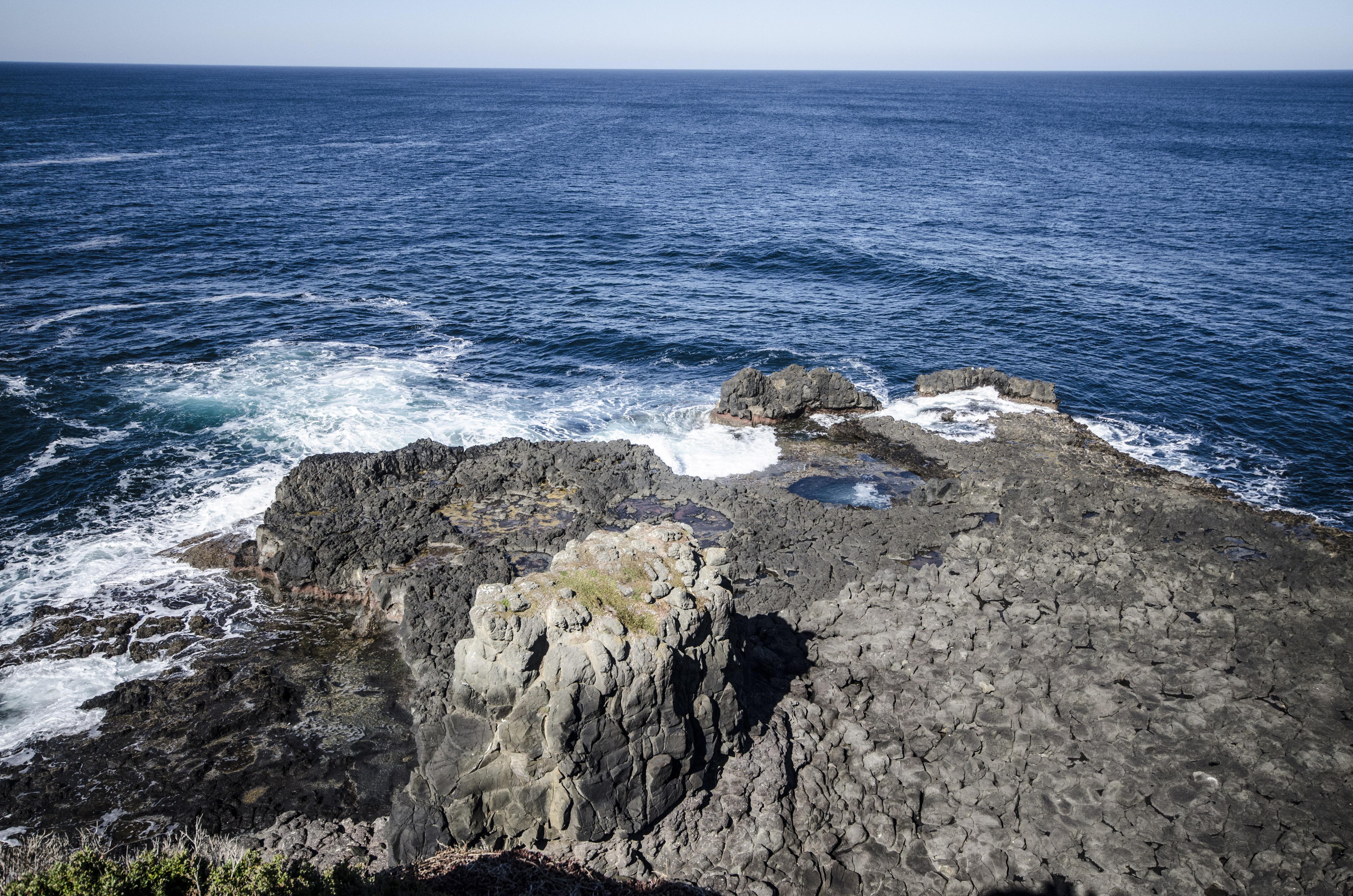 phiillip island-19