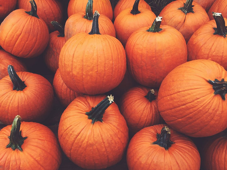 Pumpkin Skincare Products To Try This Au