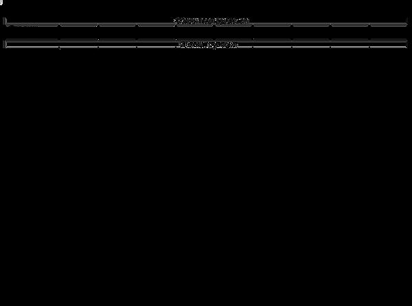 размерная_сетка_общая 2.png