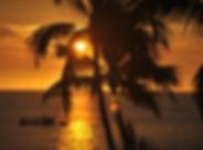 hawaii-2716325_1920.jpg