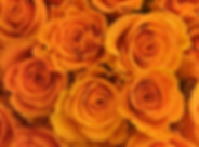 Gold Rose.png