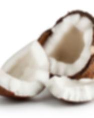 coconut-2675546_1920.jpg