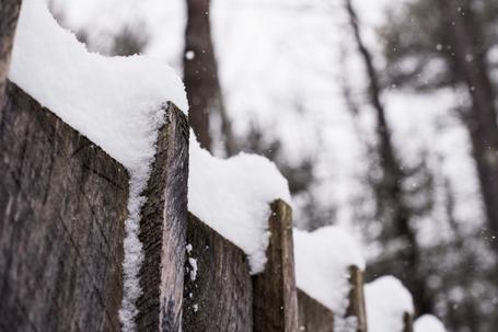 Winter_New Hampshire_2020