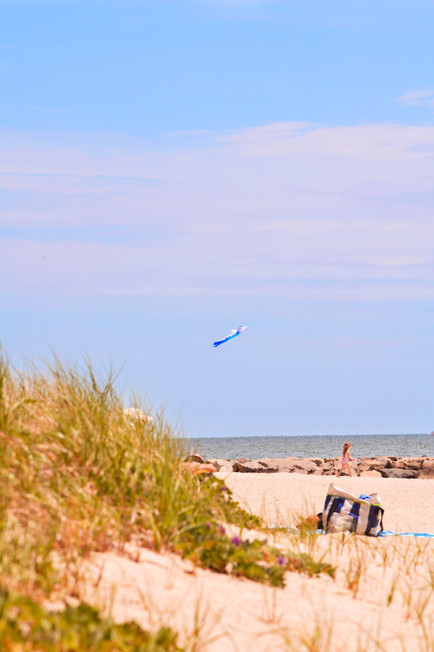 Smuggler's Beach_Kite_Cape Cod_2020.jpg