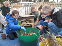 Wildlife and Sustainability Project