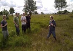 Highfield Moss Volunteering