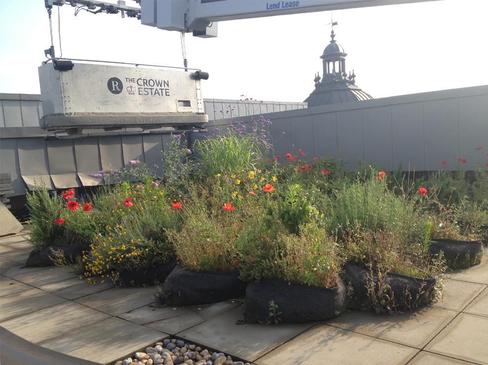The London Ecology Masterplan