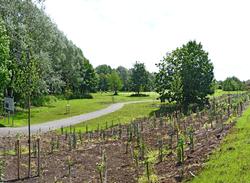 Environment Agency & Leicester CC