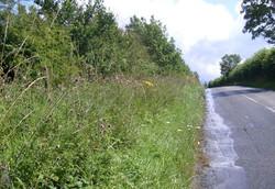 KierWSP, Northamptonshire Highways